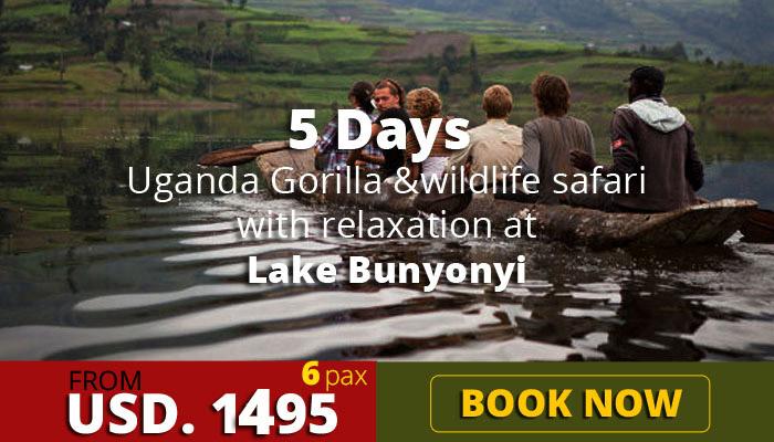 Uganda gorilla trekking tours and relaxation at Lake Bunyonyi